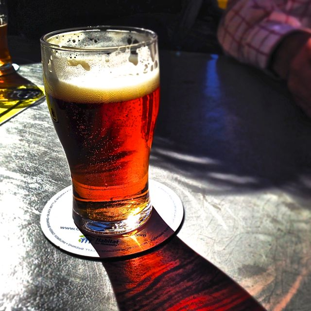 Bar gatherings are effervescent, like bubbles in a glass of beer.