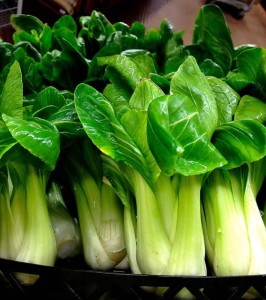 Baby bok choy is a powerhouse of nutrients.
