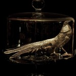 I've come to believe the Pheasant Under Glass is a mythical creature.