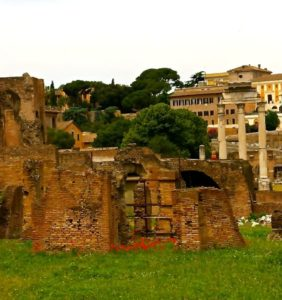 I always thought people took Tours of the Ruins in exotic places, like the Roman Forum. Not my house.