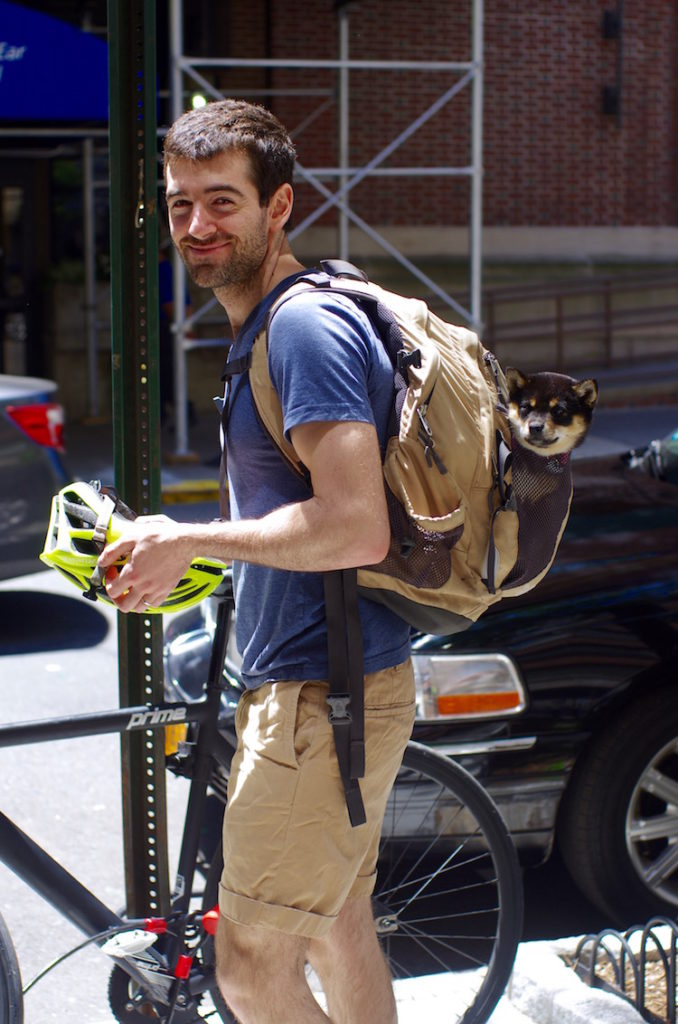 Immigrant Life: Taking Off the Cone of Shame
