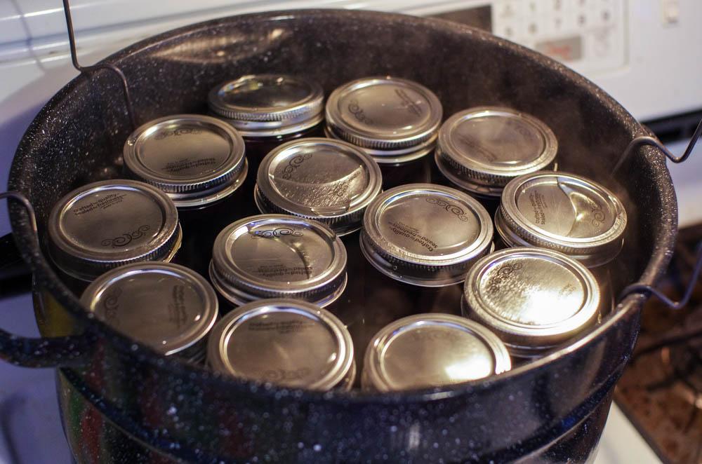 Blueberry Habañero Sauce